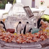 Ice carving igloo with shrimp station