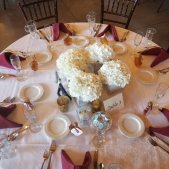 7 Vines Vineyard Wedding